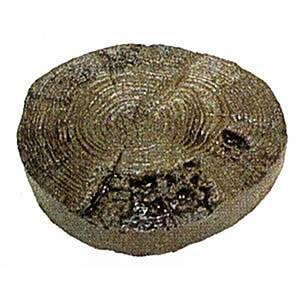 枕木 送料無料 コンクリート枕木 アルウッド年輪(小)/ダークブラウン 約Φ210〜220×T45mm (4.0kg)  ガーデニング 擬木|1128