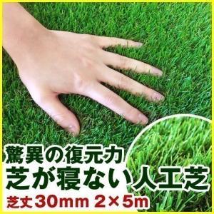 人工芝 ロール 芝生 2m×5m 芝丈30mm 単品 パークシアプレミアム(V字)|1128