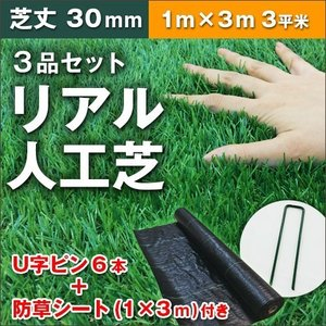 人工芝 ロール 芝生 1m×3m 芝丈30mm セット パークシアエコノミー ハイグレード 在庫限り|1128
