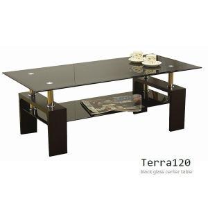 センターテーブル ガラステーブル 『テラ120』 幅120cm 【東北・北海道・沖縄・離島送料別途見積】 (GT-02)|1128