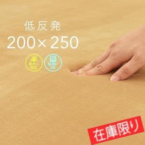 ラグマット カーペット ラグ 約3畳 200×250cm 厚手 低反発 洗える ホットカーペット 対応 ベージュ フロックス|1128