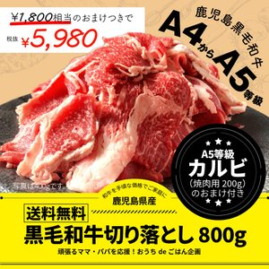 牛肉 肉 和牛 赤身肉 鹿児島産黒毛和牛 経産牛雌切り落とし800g+最高級カルビ200gおまけ付き-セット価格|1129nikulabo