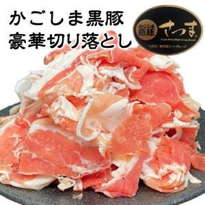 豚肉 肉 国産 かごしま黒豚 切り落とし 1.2kg|1129nikulabo