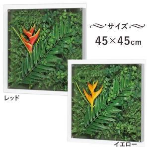 アートパネル グリーン インテリア GR3430/GR3432 アートデコ 横45cm×縦45cm お洒落な飾り 1147kodawaru