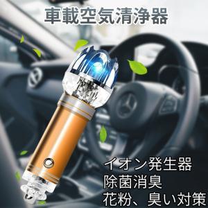 車載空気清浄器 シガーソケットに差し込む イオン発生器 イオン式空気清浄機 空気の塵/花粉/タバコの煙 除菌消臭|11oclock