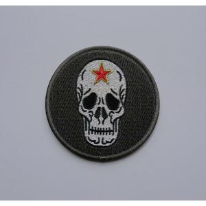航空自衛隊 飛行教導群ドクロ ロービジODパッチ|138etex