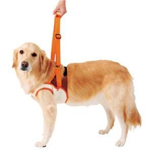 老犬介護用走行補助ハーネス前足用 2L ホームセンター|171online-shop