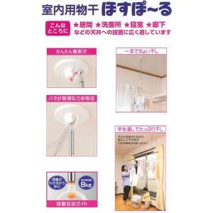 ホスポール SMP-1|171online-shop
