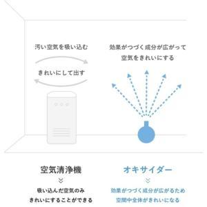 【受注生産品】 オキサイダー スプレー タイプ 容量 300ml 二酸化塩素スプレー|1885|02