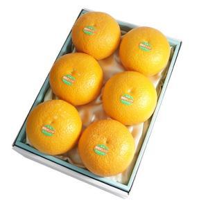 千疋屋 果物 ギフト お取り寄せ 銀座千疋屋 Gift 清見オレンジ6個入|1894ginza-sembikiya