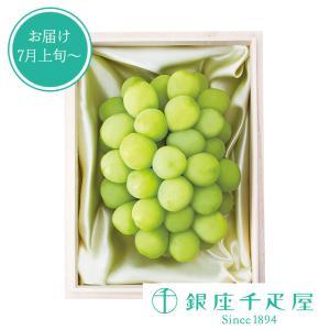 ・アレキサンドリア(約700g)×1  関連キーワード:銀座千疋屋,ギフト,高級フルーツ,通販,果物