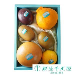 ・美生柑×1 ・パッションフルーツ×1 ・清見オレンジ×1 ・黄金柑×2 ・グレープフルーツ×2 ・...