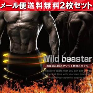 Wild beaster ワイルドビースター 2個セット|18k18k