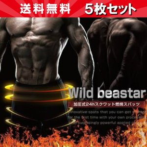 Wild beaster ワイルドビースター 5個セット|18k18k
