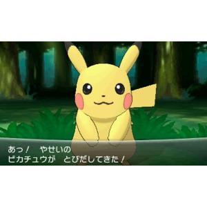 【新品】3DS ポケットモンスター X|193|05
