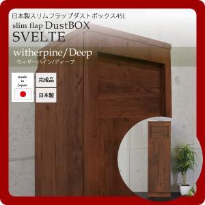 日本製スリムフラップダストボックス45L★SVELTE(スヴェルト):ウィザーパイン/ディープ|1bankanwebshop