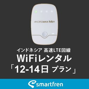 インドネシア(バリ島を含む)用 モバイルWiFi(ポケットwifi)レンタル 12-14日用 使い放題プラン [返却送料無料] 1daywifi-com