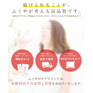 placenta 生プラセンタ サプリメント お試し (60粒入・約30日分) プラセンタ サプリ セール|1fukuya|03