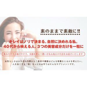 placenta 生プラセンタ サプリメント お試し (60粒入・約30日分) プラセンタ サプリ セール|1fukuya|04