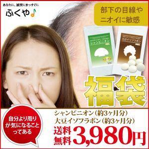 福袋 2017 50代の男性 ふくぶくろ シャンピニオン サ...