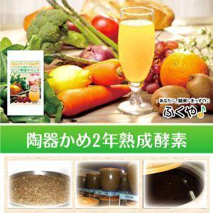 酵素ダイエット ピュア 酵素ドリンク 110g 約43杯分 お試し ファスティングドリンク|1fukuya|02