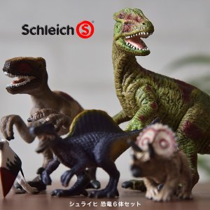 シュライヒ恐竜6体セット Schleich シュライヒ 玩具 フィギュア ジオラマ 恐竜フィギュアセット お買い得セット 在庫限り