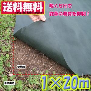アストロ 防草シート 1×20m グリーン 不織布 厚手 高透水 UV耐候剤配合 高耐久 農業 園芸用 602-45 【大口注文対応可(在庫要確認)】|1storage