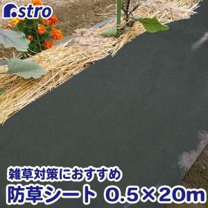 防草シート 0.5×20m グリーン 不織布 厚手 UV耐候剤配合 高耐久 農業 園芸用 【大口注文対応可(在庫要確認)】|1storage