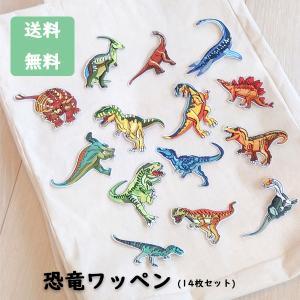 園児や小学生の男の子に人気のある恐竜の ワッペンです★  ティラノザウルスやステゴザウルス、ブラキオ...