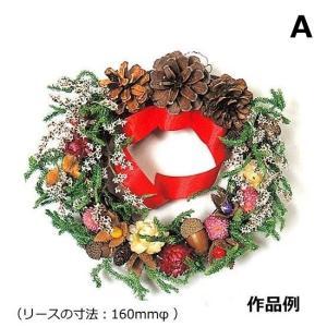 【5個以上お買い上げでボンド1本プレゼント】手作りクリスマスリースキット 森のリースキット A