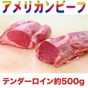 アメリカンビーフ 牛ヒレ デカ肉ブロック 約500g |2983