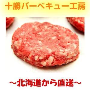 北海道産 牛100% ハンバーグステーキ 100g×5個 |2983