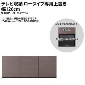 テレビ収納 ロータイプ専用上置き 幅120cm 壁面収納 astraシリーズ 壁面収納 リビング収納  本州と四国は開梱設置料込み|2e-unit