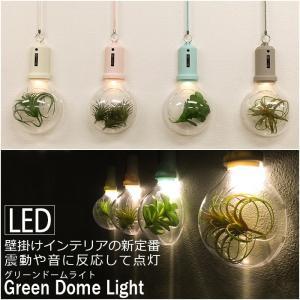 壁掛けインテリアの新定番<br>LED Green Dome Light グリーンドームライト<br>震動と音に反応し点灯<br>おしゃれ カフェ インテリア トイレ|2e-unit
