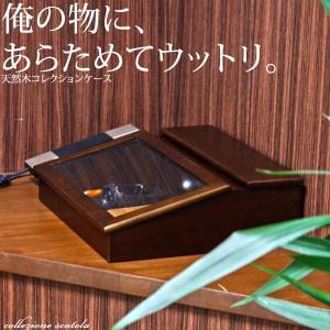 コレクションボックス 木製  送料無料 2e-unit
