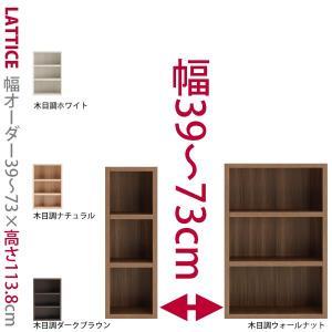 1cm単位で幅をオーダー可能な本棚 ロータイプ 幅39〜73cm Lattice  ラチス  シリーズ セミオーダー本棚 A4 本州と四国は開梱設置料込み|2e-unit