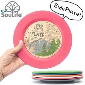 EcoSouLife Side Platel サイドプレート エコソウライフ 平皿|2m50cm