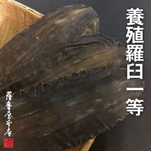 羅臼昆布 養殖1等 1kg 送料無料 〜 北海道水産物検査協会検査物 〜|3208