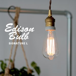 Edison Bulb Signature (L) エジソンバルブ シグネチャー L / 40W / 60W / E26|3244p