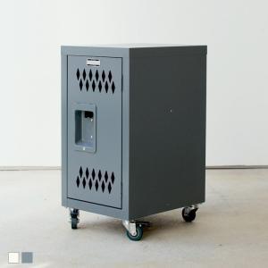 ロック スチール チェストS GY IV TPN-40GY 東谷 ROOM ESSENCE 可動式チ...