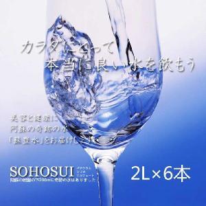 バナジウム・シリカ・サルフェートまで含有した阿蘇の天然水 「蘇豊水」2L×6本(1ケース) 国内トップクラスのミネラル含有率で旨い水 3259393