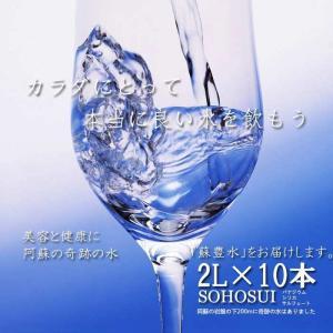 バナジウム・シリカ・サルフェートまで含有した阿蘇の天然水 「蘇豊水」2L×12本(2ケース) 国内トップクラスのミネラル含有率で旨い水 3259393
