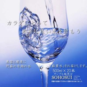 送料無料 シリカ水/バナジウム水/サルフェート水 阿蘇の非加熱天然水 「蘇豊水」500ml×20本(サンプル販売1ケース) 圧倒的ミネラル含有で旨い水 3259393