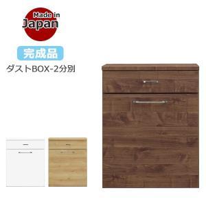 ゴミ箱 キッチンカウンター ダストボックス 45L 2分別 キャスター付き ダストBOX おしゃれ ごみ箱 国産|35plus