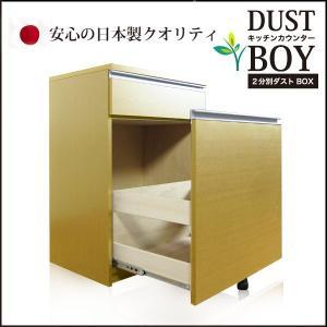 ダストボックス ゴミ箱 ごみ箱 2分別 蓋付き|35plus