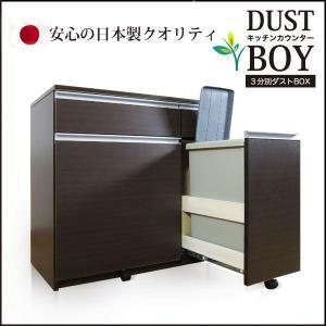 ダストボックス ごみ箱 ゴミ箱 3分別 分別 蓋付き|35plus