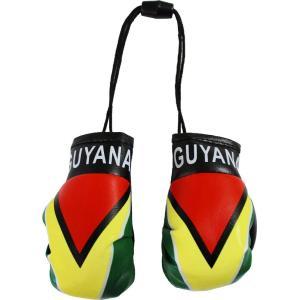 Flaglineガイアナ - ミニボクシンググローブ Flagline Guyana - Mini ...