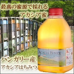 はちみつ 熊手の蜂蜜 ハンガリー産アカシア(アカシヤ)蜂蜜 2.0kg|38kumate