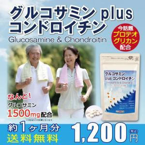 ゆうパケット 送料無料 サプリ グルコサミン コンドロイチン II型コラーゲン プロテオグリカン 膝 腰 関節 痛み つらい|39genki1