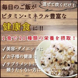 国産昆布とひじきの十八穀ごはん 雑穀 雑穀米 ビタミン ミネラル 食物繊維 美容 ダイエット 健康食 スティックタイプ|39genki1